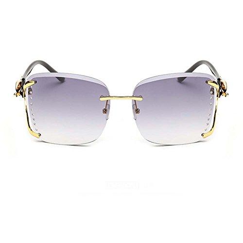 Hikote #811 Classic Square Lady UV 400 Summer Fashion Personality Sunglasses(C5)