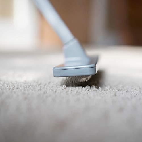 Quality Line Universal Carpet Rake Effective Safe Pet Hair Removal User Friendly Rug Carpet Cleaner Ergonomic Unique Design Features A 4