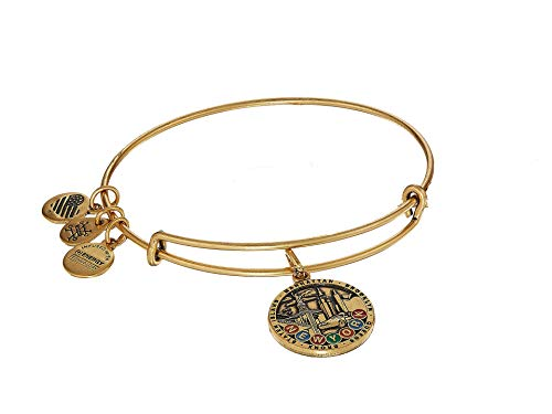 Alex and Ani Women's Places We Love - New York City Bangle Rafaelian Gold One Size (Subway Token Nyc)