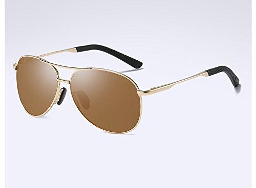 brown Gafas macho Guía polarizadas gris Gafas Sunglasses gafas Frame sol Vintage gafas HD TL gris de Mens BwRAf