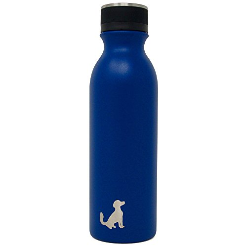 Pittsford Outfitters Classic Water Bottle | Double Wall, Vacuum Insulated, Stainless Steel, Leak Proof, Powder Coated BPA Free & Metal Lined Insulated Cap (Dark Blue, 20 oz)