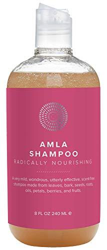 Hairprint - Natural Plant-Based Amla Shampoo (8 fl oz / 240 ml)