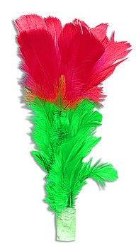 Forum Novelties 3348 Multiplying Flowers Gift -