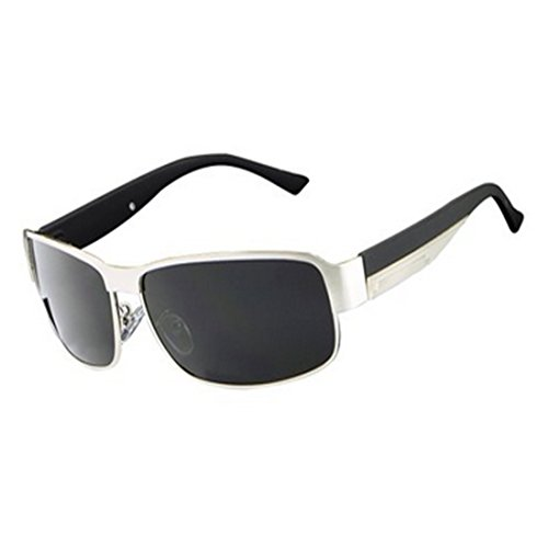 HDCRAFTER Fashion Mens Polarised Outdoor Sunglasses (E007 Silver, - Polarised Mens Sunglasses