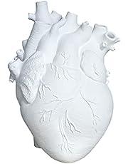 GEQIAN Bloemvazen Creatieve Planter Pot - Simulatie Hartvormige Vaas Hars Anatomisch Orgaan Bloempot Ornament voor Thuis Halloween