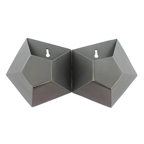 (Hexagonal Honeycomb Iron Wall Vase - Double)