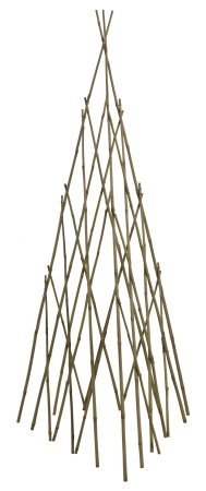 Bonide Products TP60 Bamboo Teepee Trellis for Climbing Plants, 60 Inches (When Open), 1 (Garden Teepee)