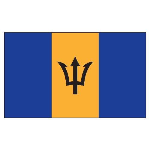 - US Flag Store Superknit Polyester Barbados Flag, 3 by 5-Feet