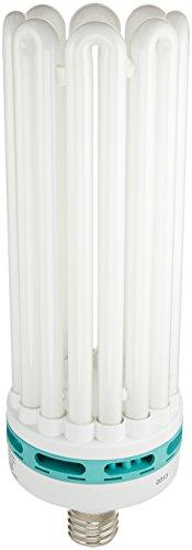 Harvest Sun Ballast - SunBlaster CFL Self ballasted Propagation lamp, 6400K Light Spectrum, 200 Watt, Use Mogual Size Light Socket