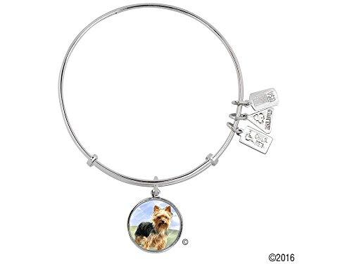 Yorkshire Terrier Bracelets - 4