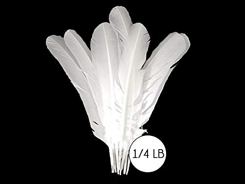 Moonlight Feather | 50 Pieces - Turkey Feathers - White Turkey Round Wing Quill Large Wholesale Feathers (Bulk) Halloween, Indian Craft, Wedding, Angel Wing Feathers
