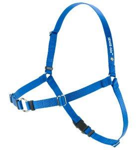 Softouch SENSE ible No Pull Dog Harness Blue Medium Large