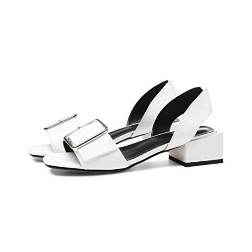 (OTOSU Women's Low Chunky Heeled Sandals Open Toe Metallic Buckle Slip On Square Heel Slingback Sandals)