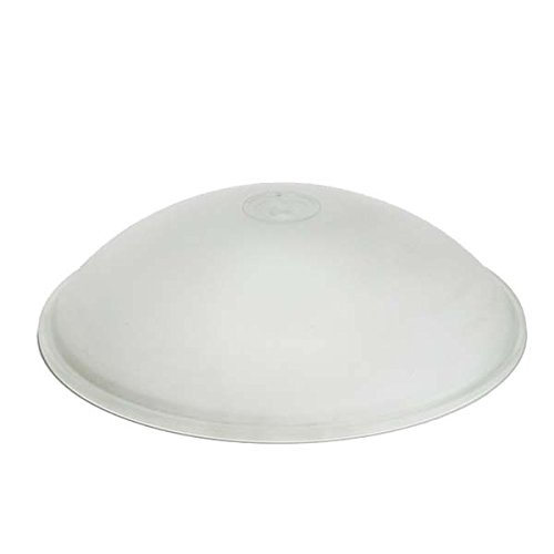 Replacement Ceiling Dish Glass Shade Www Gradschoolfairs Com