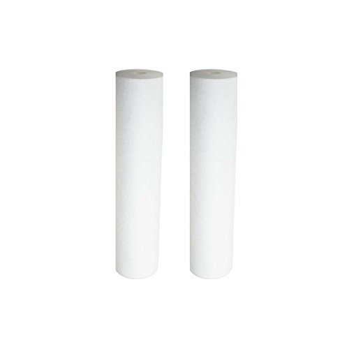 Pentek DGD-5005-20 Dual Gradient Sediment Water Filters (20'' x 4.5'') - 2 Pack by Pentek