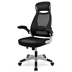 IntimaTe WM Heart Desk Chair Ergonomic, Executive Office Chair, Fabric Mesh Chair, Swivel Computer Chair with High-Back…