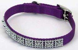 Coastal Pet Products DCP420114PUR Nylon Jeweled Dog Collar, 14-Inch, Purple