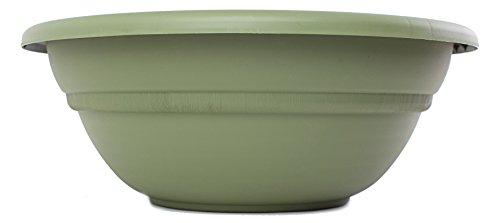Bloem MB2124-42 Milano Planter Bowl, 24-Inch, Living (Living Green Planter)
