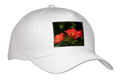 3dRose Stamp City - Flowers - Close up Photograph of eyecatching Playboy Floribunda Roses. - Adult Baseball Cap (Cap_308725_1)