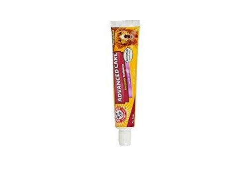 (Arm & Hammer Dog Dental Care Tartar Control Enzymatic Toothpaste for Dogs | Reduces Plaque & Tartar Buildup | Safe for Puppies, 2.5 ounces, Beef Flavor)