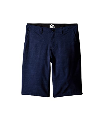 Quiksilver Kids Boy's Platypus Amphibian Shorts (Big Kids) Navy Blazer Swim Trunks 29 (18 Big Kids)