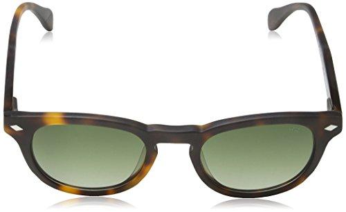 de Matt Verde Gafas Adulto Havana Sol Lozza Unisex 8x6a4w5Cq