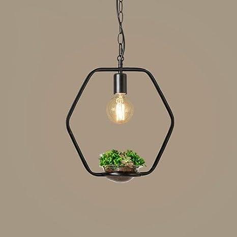 Lámpara de techo colgante de planta de luces de techo de ...
