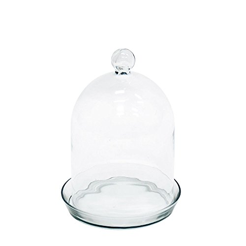 Achla Designs Bell Jar Terrarium I (Bell Jar Collection)