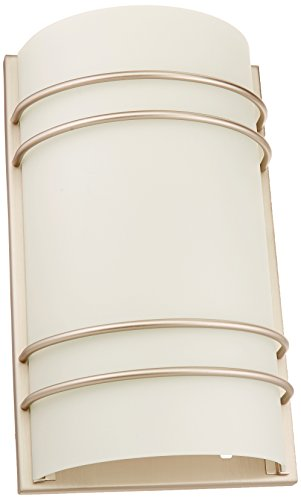 Lite Source Glass Shade (Lite Source LS-16222SS/FRO Strokes Wall Sconce Lite, Satin Steel with Frost Glass Shade)