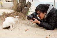 CAT PIC クッキーズ 沖さん(いちごミルク)