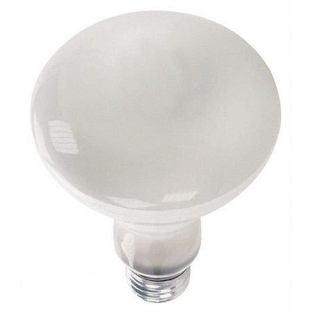 Lighting 65R30//FL//STG Incandescent Floodlight,BR30,65W