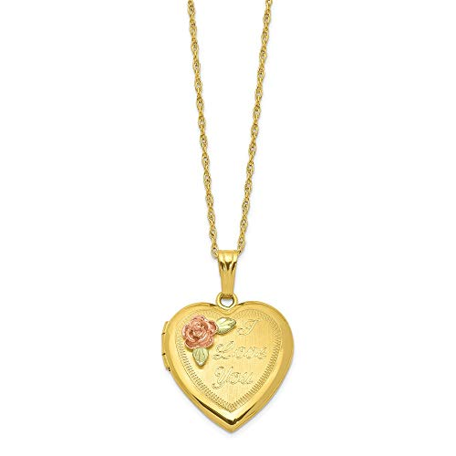 14k Yellow Gold Filled 12k Accents Black Hills Photo Pendant Charm Locket Chain Necklace That Holds Pictures Fine Jewelry Gifts For Women For - Black Mom Gold Necklace Hills