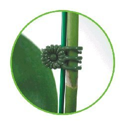 Orchid and Plant Spike Clips. Daisy clips. MEDIUM size. 24 Pack. Green
