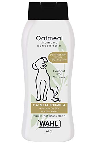 Wahl Dry Skin & Itch Relief Pet Shampoo for Dogs - Oatmeal Formula with Coconut Lime Verbena & 100% Natural Ingredients - 24 Oz (Best Smelling Puppy Shampoo)