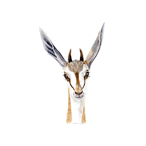 Baby Springbok Watercolor, Safari Animal Nursery Print, Black, Brown - Various Sizes - Usps Customs Fees