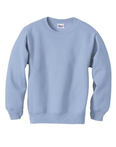 Hanes Youth ComfortBlend EcoSmart Crewneck Sweatshirt_Light Blue_XL