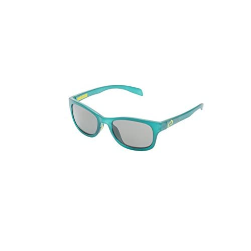 f3823fedea lovely Native Eyewear Highline Polarized Sunglasses - samavesha.org