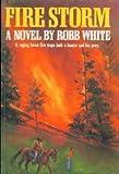 Fire Storm: A Novel