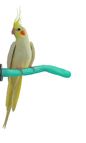 Branch Sweet (Sweet Feet and Beak Safety Pumice Perch for Birds by Features Real Pumice to Trim Nails and Beak and Promote Healthy Feet - Safe and Non-Toxic, For Bird Cages - [ Small/Green ])
