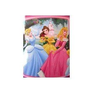 amazon com disney princess blanket home kitchen