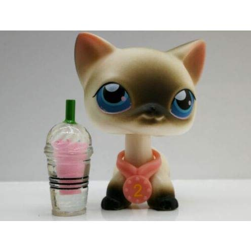 Littlest Pet Shop Siamese Cat #5 LPS Short Hair Black/White Blue Eyes (Black And White Great Dane With Blue Eyes)