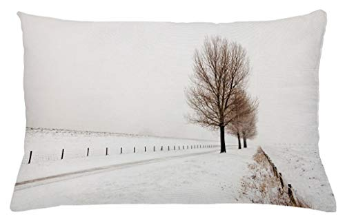 Ambesonne Rustic Throw Pillow Cushion Cover, Row of Large and Bare Beech Trees in Snow Covered Winter Frozen Photography Art, Decorative Accent Pillow Case, 26 W X 16 L Inches, White Brown