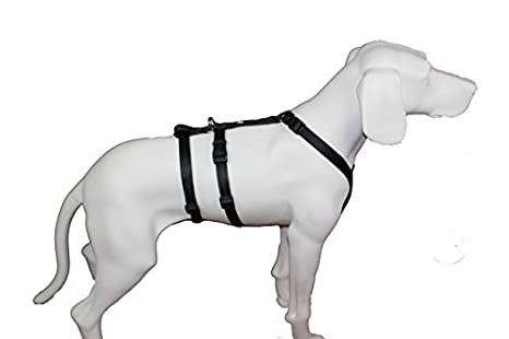 Felt Muñeco noexit arnés del perro, negro uni: Amazon.es ...