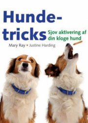 Hunde-tricks Hunde-tricks