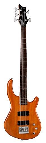 dean 5 string bass - 2