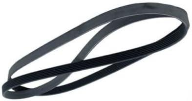 New Serpentine V Drive Belt For VW Beetle Golf Jetta Passat 038903137J 6PK1660