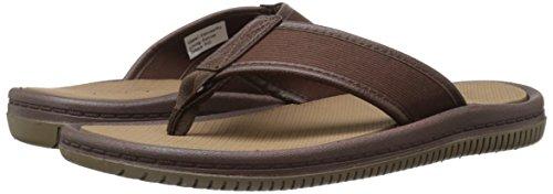 Aldo Men's Canotto Flip Flop, Dark Brown, 10 D US