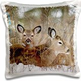 Deer - Mule deer resting in cover in Whitefish Montana 16x16 inch Pillow Case