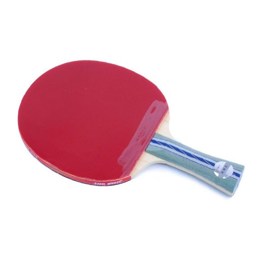 Dhs Ping Pong Paddle A5002 Table Tennis Racket Shakehand