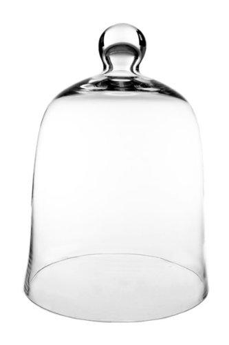 Glass Cloche Bell Jar, Plant Terrarium. (1 pc) (Glass Bell Jars)